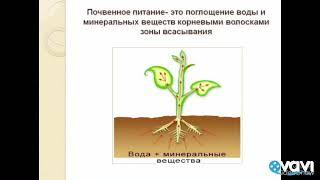 Минеральное питание растений. Биология в стихах 6 класс.