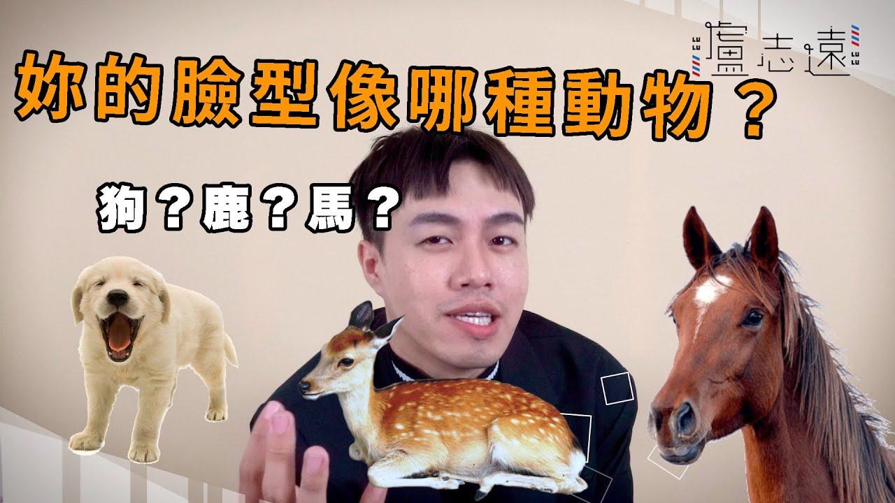 妳是狗臉還是鹿臉? 日系韓系髮型的隱藏關鍵 - YouTube