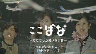 ここばな ~ここでしか聞けない話~ Vol.10 マイルがたまるスマホ「ANA Phone」