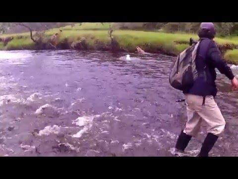 Pesca rio cauca - coconuco - cauca, Colombia