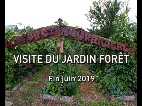 Extraits de visite du jardin for t de simple juin19 youtube - Visite du jardin de stephane marie ...