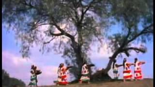 RAIZ VIVA - Los Folkloristas