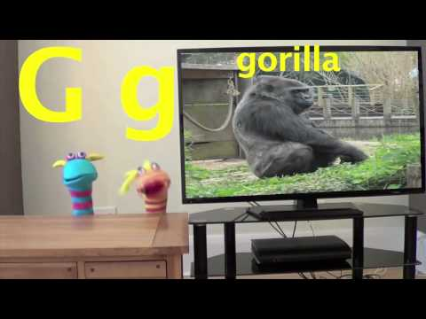 The ABC Song For Kids  Animal ABC Song  Zoo Phonics Song  Learn English & Your ABC