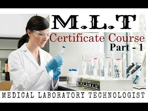 M.L.T Complete Course (इंग्लिश से हिंदी) Part-1