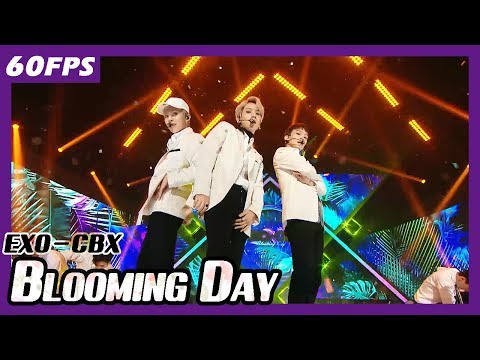 60FPS 1080P | EXO-CBX - Blooming Day, 엑소-첸벡시 - 花요일 Show Music Core 20180414
