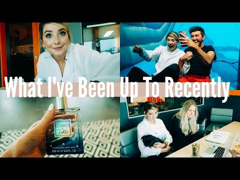 WHAT I'VE BEEN UP TO RECENTLY | WEEKLY VLOG