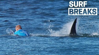 Save The Shark, Mick Fanning's New Documentary | SURF BREAKS