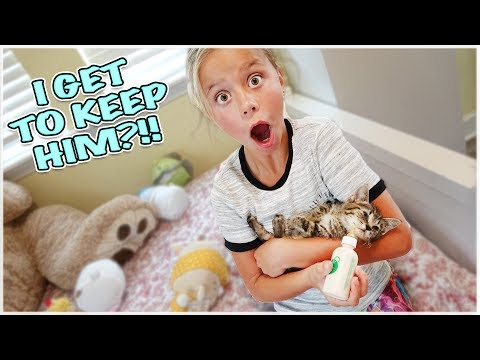 RESCUED AN ABANDONED MIRACLE KITTY!! AYDAH GETS THE SURPRISE OF HER LIFE!!