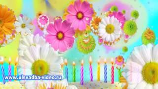 Футаж С Юбилеем 45 лет с цветами и фейерверком