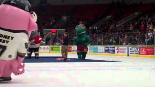 ZOOperstars Second intermission.WMV