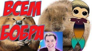КУКЛЫ ЛОЛ 3 СЕРИЯ - Ютуберы Русалочки ВИНДЯЙ!!!
