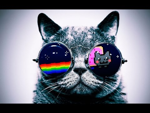 IM A COOL CAT. Hehe.
