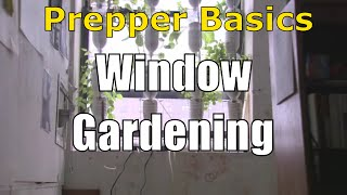 Prepper Basics: Window Gardening