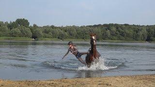 Sommer mit Sissy - Sturz im See - Stoppelfeld