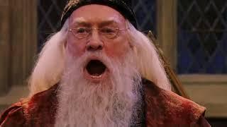 Albus Dumbledore Goes Skrra - Harry Potter