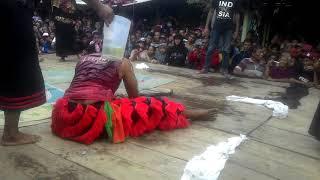 Manusia Buas Legowo Putro Kucingan Anggora Live PARE 3-2-2019