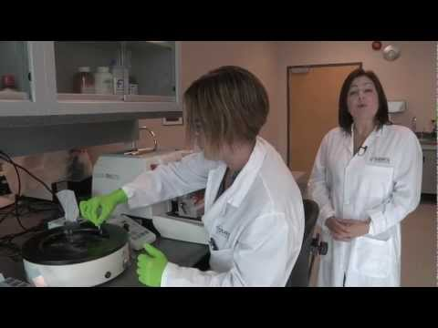 Robarts Virtual Tour - Molecular Pathology