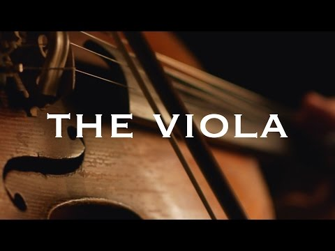 Instrument Series: The Viola