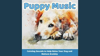 Music for Dogs (Soothing Sounds)