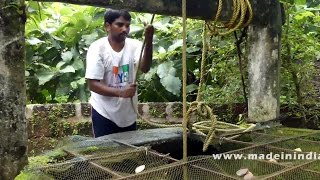 Cooking Tomato Dal Traditional Indian Village Style   Tamata Pappu