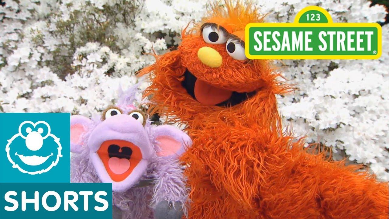 Murray Sesame Street Toy