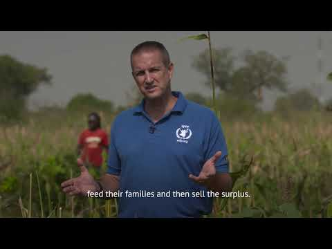 WFP's Zero Food Loss Initiative a simple solution that could transform African Agriculture