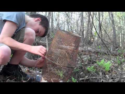 Diy bait fish trap building a bait fish trap for 2 doovi for Bait fish trap