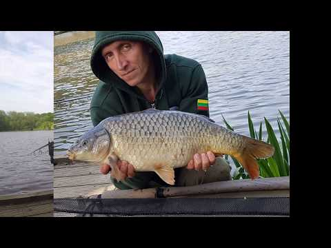 Carp Fishing At Aston Ponds
