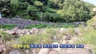 지리산 계곡%~  야외  바베큐파티