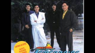 Watch Los Temerarios Una Miradita video