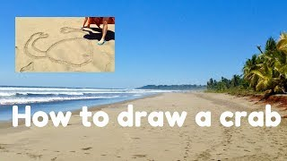 How to Draw a Crab in the Sand