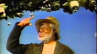 A Canção do Sul: Zip-a-Dee-Doo-Dah