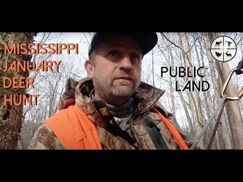 Public Land Deer Hunt In Mississippi With Rifle