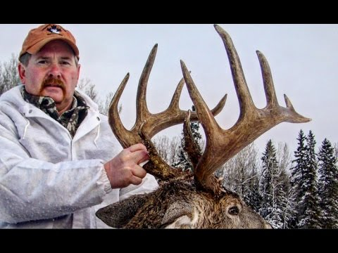 Saskatchewan Archery Whitetail Hunt