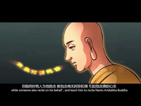 短視頻:轉世投胎由誰定 #慧淨法師
