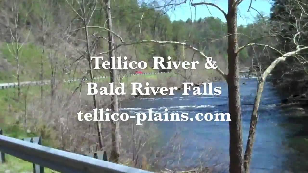 Swingers in tellico plains tn