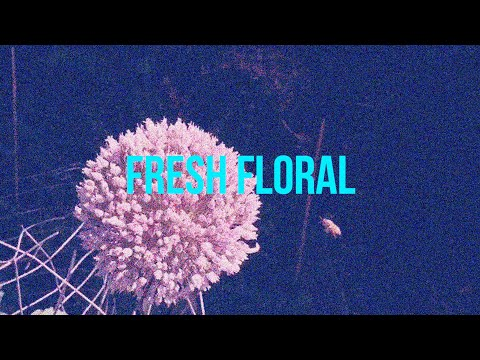 Chino - Fresh Floral (Official Music Video)