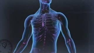 Fracture Costale : Comment s'en sortir !