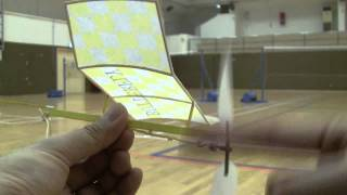 Butterfly Indoor Airplane