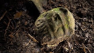 Ancient City Discovered In The Amazon Rainforest