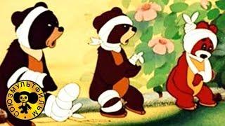Первый урок | Советские мультфильмы для детей