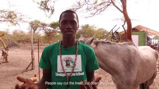 Taaru Askan Organic Farm in Senegal, West Africa