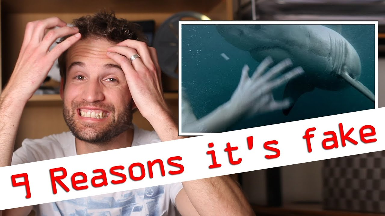Reasons Its Fake GoPro Man Fights Off Great White Shark In - Man fights great white shark sydney harbour jumping cliff