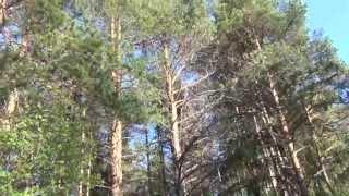 18 05 13 Экологическая тропа в Верхнем Спасе