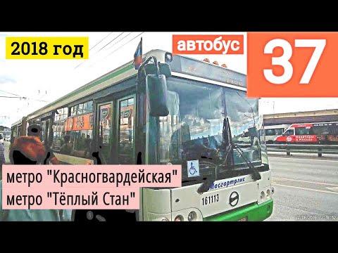 "Автобус 37 метро ""Красногвардейская""  - метро ""Тёплый Стан"" // 22 августа 2018г"
