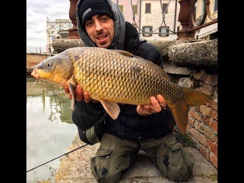 ...Adria Street Fishing...