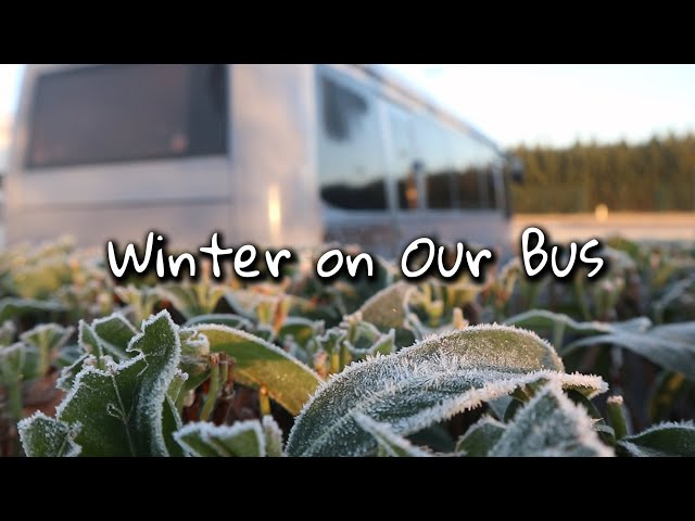 Van Life in Winter | Truma Combi 4e and iNet