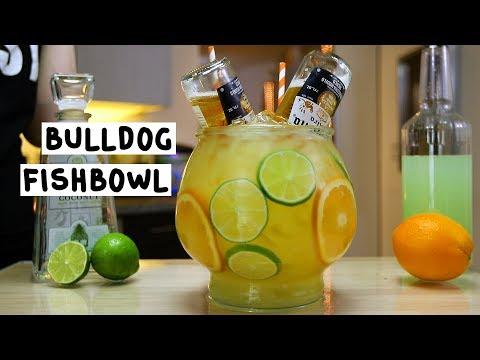 Bulldog Fishbowl