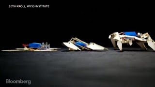 Is this Origami Robot the First Real Transformer?