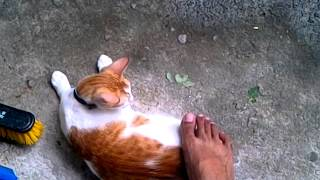 Cuddled by an ugly feet thumbnail